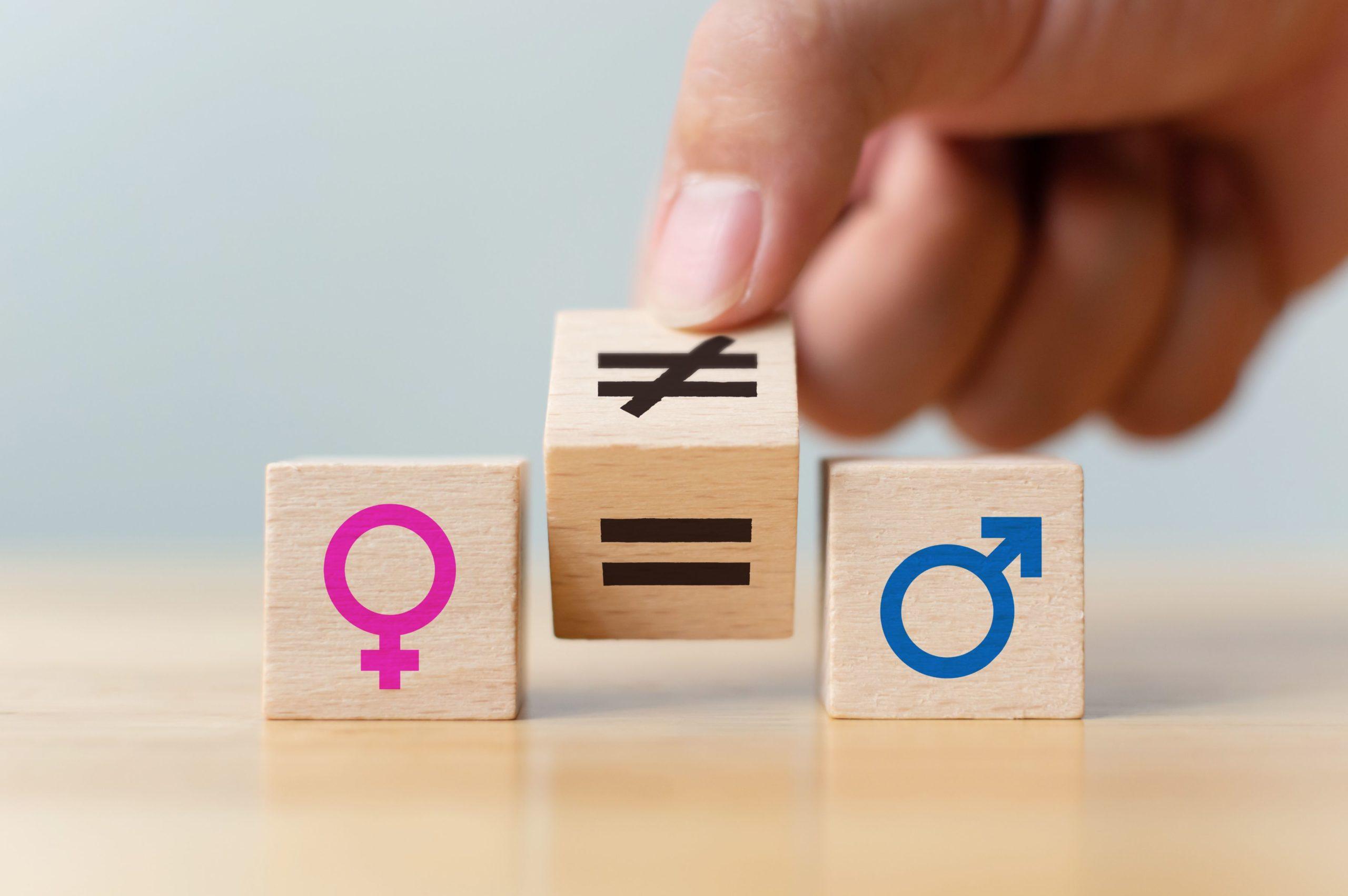Index de Egalité Femmes-Hommes
